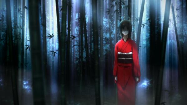 "Un flashback que tuvo Kokutou correspondiente a escenas de la segunda película: ""Intento de Asesinato (Primera Parte)""."
